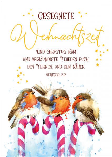 """Postkarte """"Rotkehlchen auf Zuckerstange"""""""