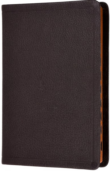 Elberfelder 2003 - Standardausgabe / Ziegenleder braun / Rotgoldschnitt mit Griffregister
