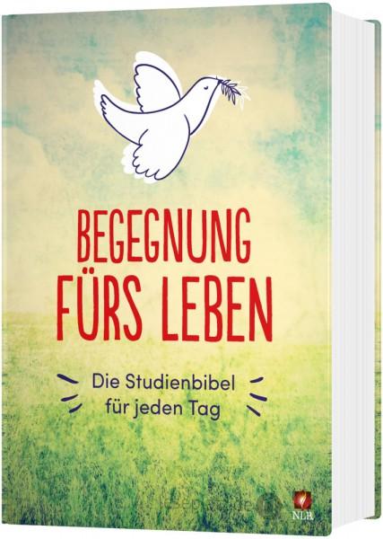 """Begegnung fürs Leben - Motiv """"Taube"""""""