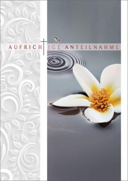 "Faltkarte ""Weiße Seerose "" - Trauer"