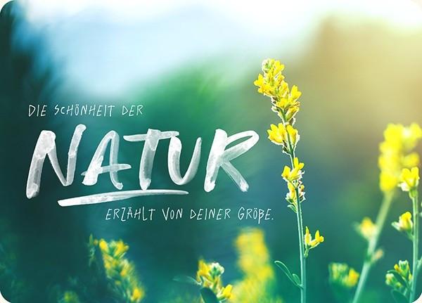 "Postkarte - Big Blessing ""Natur"""