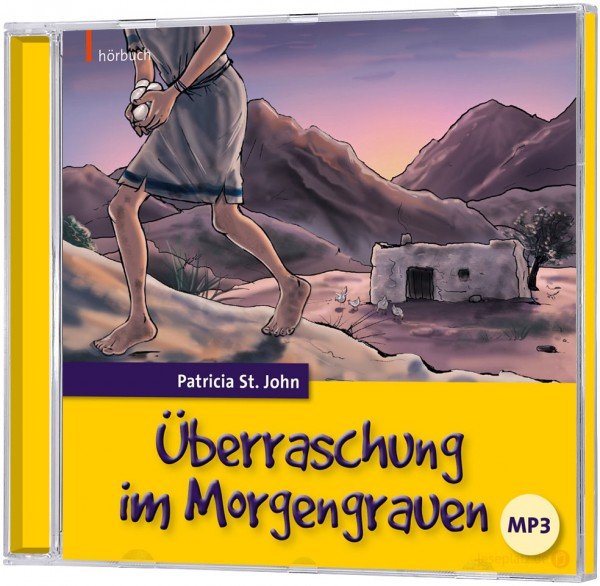 Überraschung im Morgengrauen - Hörbuch (mp3-CD)