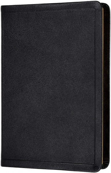 Elberfelder 2003 - Standardausgabe / Kalbsleder Goldschnitt mit Griffregister