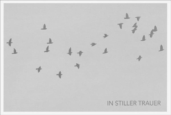 """Doppelkarte """"Silberne Vögel"""""""