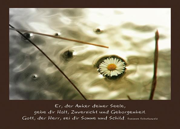 "Faltkarte ""Anker deiner Seele"""