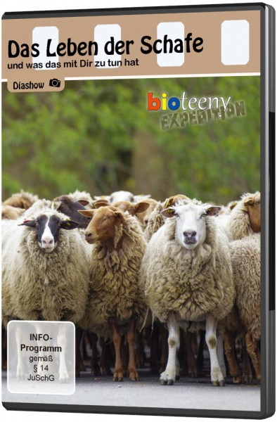 Das Leben der Schafe - DVD (Diashow)