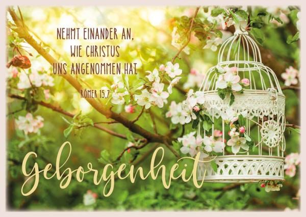 """Postkarte """"Geborgenheit/Vogelkäfig"""""""