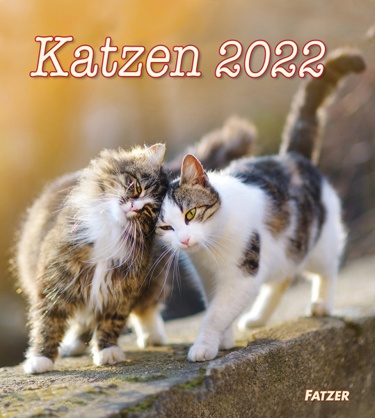Katzen 2022 - Wandkalender