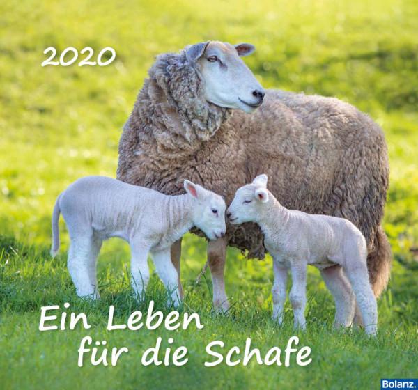Ein Leben für die Schafe 2020 - Wandkalender