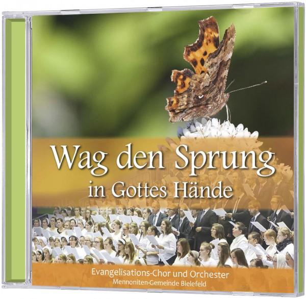 Wag den Sprung in Gottes Hände - CD